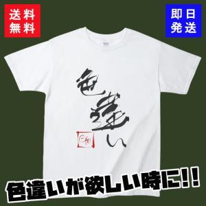 ポケモンGO Tシャツ 色違い 半袖 カットソー
