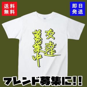 ポケモンGO Tシャツ 友達募集中 半袖 カットソー
