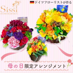 【5/21〜5/24の期間のお届け】ラウンドアレンジメント 母の日 父の日 花 フラワー ギフト プレゼント 到着後レビューを書いて送料無料|sissi