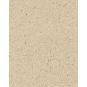 土佐和紙壁紙 光触媒 ヒノキブラウン (壁紙/かべ紙/クロス//張替)|siturai