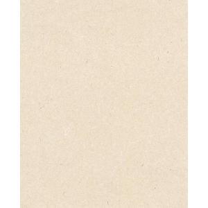 土佐和紙壁紙 光触媒 こうぞ雲竜肌色紙 (壁紙/かべ紙/クロス//張替)|siturai