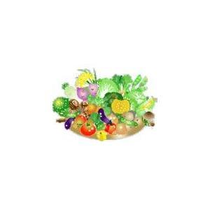 野菜の種(たね)伝統品種 sizen