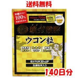 琥金醗酵ウコン粒 100日分(1包5粒x100包入)100g...