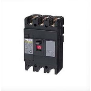 日東工業 NE62A2P60A サーキットブレーカー 経済形 NE 極数2P 定格電流60A  60AF|sk-r