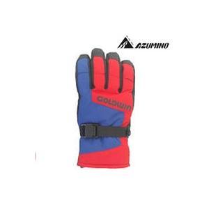 GOLDWiN[ゴールドウィン グローブ]<2016>Free Flow Glove G81505P ski-azumino