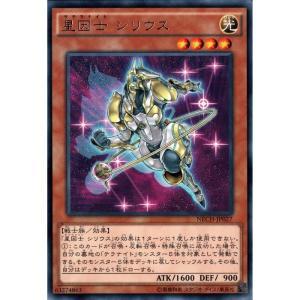 星因士 シリウス 【R】_|skip-y