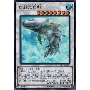 白闘気白鯨 【UR】_|skip-y