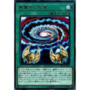 黒魔術の秘儀 【R】_