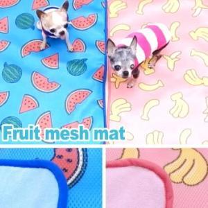 フルーツメッシュマット (チワワ 小型犬 通気性 マット パイル メッシュ) skipdog010420