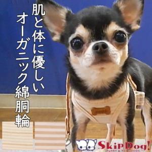 チワワ 小型犬 胴輪 リード