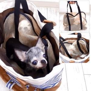 インナーバッグ 猫用シンプルメッシュ Lサイズ (チワワ 小型犬 犬 ショルダー トート バッグ ペット キャリー)|skipdog010420|03