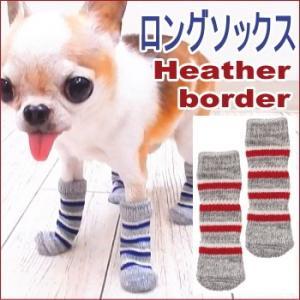 ロングソックス 杢ボーダー (チワワ 小型犬 犬 くつした 靴下 滑り止め すべりどめ 肉球 保護 介護 フローリング)|skipdog010420