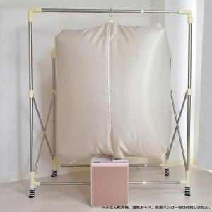 カラッと!衣類乾燥袋 FIN-782〔代引き不可〕  トレード