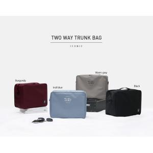 ICONIC 2way TRUNK BAG トラベルスーツケース  4種類旅行 スーツケース 日帰り旅行 トラベル シンプル おしゃれ ケースすっきり 汚れにくい|skipskip