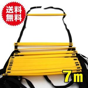 7M ラダー トレーニング トレーニングラダー アジリティラダー イエロー 黄色|sky-group