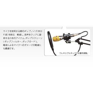 ポップスクリーン フレキシブルネック仕様 CD・DVD・楽器 楽器 パーツ・アクセサリー マイク その他|sky-group|04
