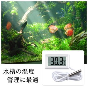 小型 デジタル 温度計 -50℃〜+110℃対応 外部センサー 簡単 便利 電子工作 冷蔵庫 冷凍庫 室温 水槽 1m|sky-group|02