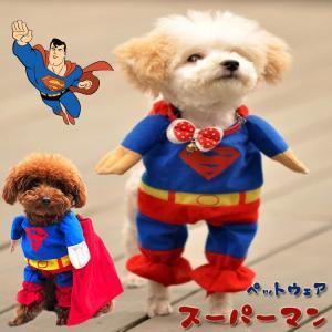 【メール便 送料無料】ドッグウェア 犬服のトレーナー ワンちゃんがスーパーマンに変身|sky-sky
