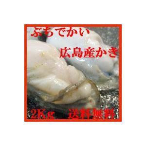 広島産冷凍かき!2Lサイズ2Kg!送料無料 skyandblue