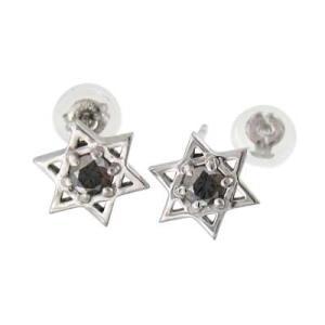 ダビデの星 1粒 石 ペア ピアス ブラックダイアモンド 18金ホワイトゴールド キャッチ付き|skybell-shop
