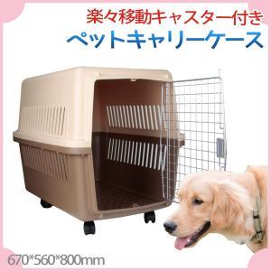 ペットキャリー ケース キャスター付き 軽量 犬  560x615x800mm Lサイズ ハードケースタイプ|skybreath