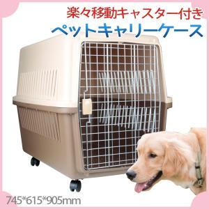 ペットキャリー ケース キャスター付き 軽量 犬  615x690x905mm LLサイズ ハードケースタイプ|skybreath