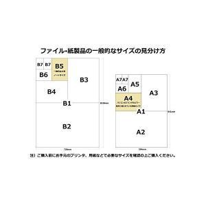 菜乃花 2018年 カレンダー 壁掛け B2の詳細画像5