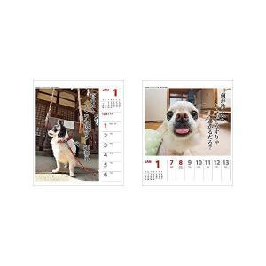 アートプリントジャパン 2018年 チワワ川柳...の詳細画像1
