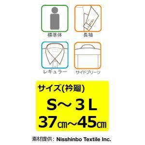 KELTNER形態安定ワイシャツ (長袖) レギュラー衿 ストライプ|skyjack|02
