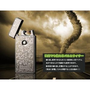 日本初上陸パルスライター 強風でも使える USB充電式エコー電子ライター ZB308 skynet