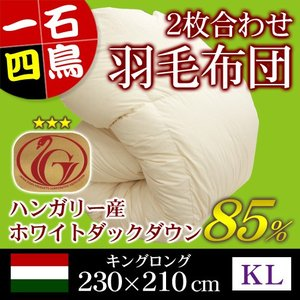 羽毛布団 2枚合わせ ニューゴールドラベル キングロング 230×210cm ホワイトダックダウン85% ハンガリー産 日本製|sleeping-yshop