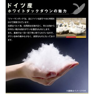 西川 2枚合わせ羽毛布団シングルロング ドイツ産WDD85%(NN7535)SL 日本製 sleeping-yshop 04