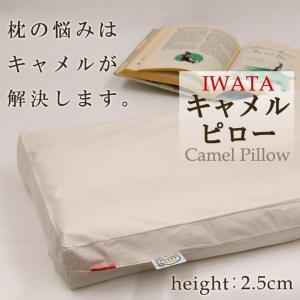 枕 日本製 イワタ キャメル枕 高さ2.5センチ キャメルピロー 低め 国産 ムレにくい 寝返り 首 頭 頸椎 洗える 枕 キャメル|sleepmaster