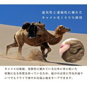 枕 日本製 イワタ キャメル枕 高さ2.5センチ キャメルピロー 低め 国産 ムレにくい 寝返り 首 頭 頸椎 洗える 枕 キャメル|sleepmaster|02