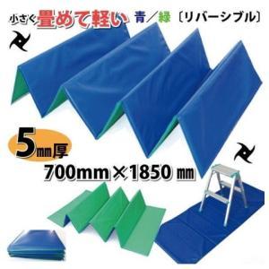 日大工業 折りタタミ式クッション養生材忍者N リバーシブル ブルー/グリーン 000111|slow-dougu-net
