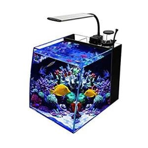 GankPike アクアリウムセット 超クリアガラス水槽 海水魚水槽 (容量 約28L)… slow-lifes
