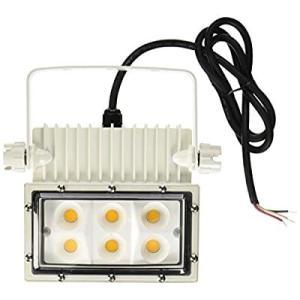 アイリスオーヤマ 屋外LED照明 角型投光器63W IRLDSP63L2-W-W|slow-lifes