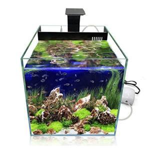 GankPike リビングキューブ 300 アクアリウムセット 超クリアガラス水槽 オールインワン水槽 淡水魚水槽 (容量 約3|slow-lifes
