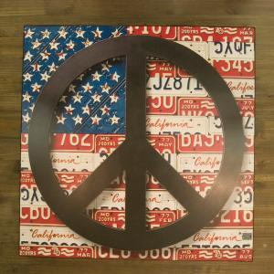 "Old New シリーズ[プレート""PEACE U.S.A""]<アメ雑>PEACE U.S.A (DC815BKG53)|smafy"