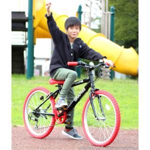 子供用自転車 週末価格 20インチ シマノ6段ギア 全10色 クロスバイク スキュワー式 GRAPHIS|smart-factory|05