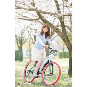 送料無料 マウンテンバイク 26インチ シマノ シマノ製18段ギア GRAPHIS グラフィス GR-005 (6色)  自転車 26インチ メンズ レディース 自転車 おしゃれ|smart-factory|19