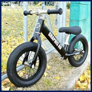 プロテクタープレゼント 幼児用ペダルなし自転車 子供用自転車 12インチ アルミフレーム 3色 GRAPHIS GR-AB smart-factory 10