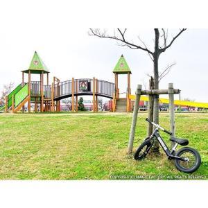 プロテクタープレゼント 幼児用ペダルなし自転車 子供用自転車 12インチ アルミフレーム 3色 GRAPHIS GR-AB smart-factory 15