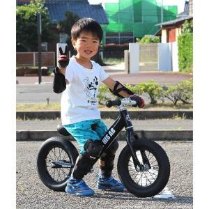 プロテクタープレゼント 幼児用ペダルなし自転車 子供用自転車 12インチ アルミフレーム 3色 GRAPHIS GR-AB smart-factory 17
