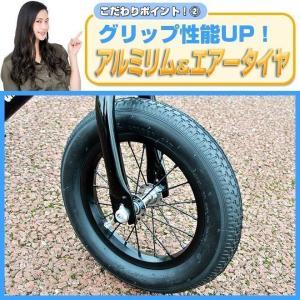 プロテクタープレゼント 幼児用ペダルなし自転車 子供用自転車 12インチ アルミフレーム 3色 GRAPHIS GR-AB smart-factory 05