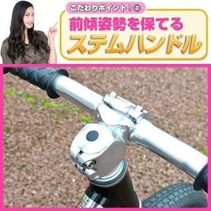 プロテクタープレゼント 幼児用ペダルなし自転車 子供用自転車 12インチ アルミフレーム 3色 GRAPHIS GR-AB smart-factory 06