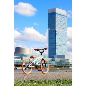 子供用自転車 平日限定2000円クーポン 20インチ BMX タイプ 4色 子供自転車 男の子 子供 幼児 キッズ ストリート 街乗り おしゃれ|smart-factory|10