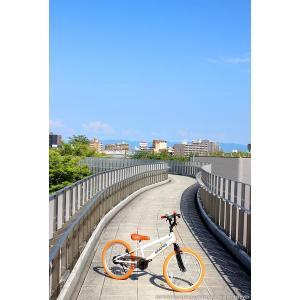 子供用自転車 平日限定2000円クーポン 20インチ BMX タイプ 4色 子供自転車 男の子 子供 幼児 キッズ ストリート 街乗り おしゃれ|smart-factory|11