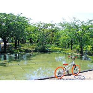 子供用自転車 平日限定2000円クーポン 20インチ BMX タイプ 4色 子供自転車 男の子 子供 幼児 キッズ ストリート 街乗り おしゃれ|smart-factory|12