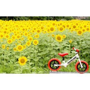 幼児用ペダルなし自転車 週末価格 子供用自転車 20色 RBJ ランニングバイクジャパン大会公認 GR-BABY|smart-factory|09
